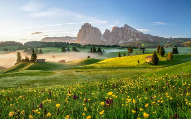 Seiser Alm Dolomite Alps Italy - Fine Art prints