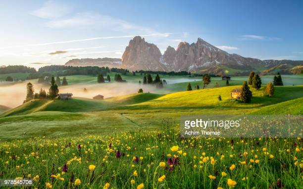 seiser alm, dolomite alps, italy, europe - landscape scenery stock pictures, royalty-free photos & images