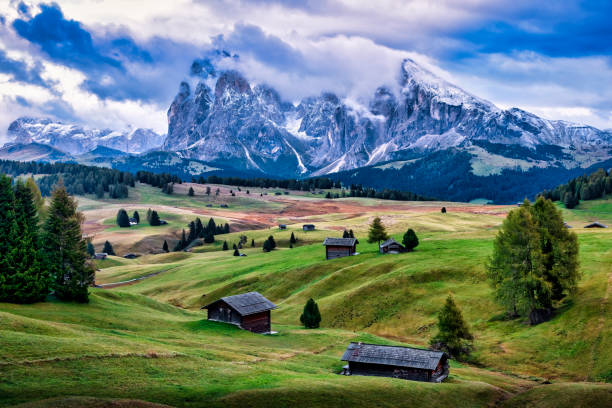 Seiser Alm with the mountains of Langkofel Group in the background, Dolomites, Trentino-Alto Adige, Italy