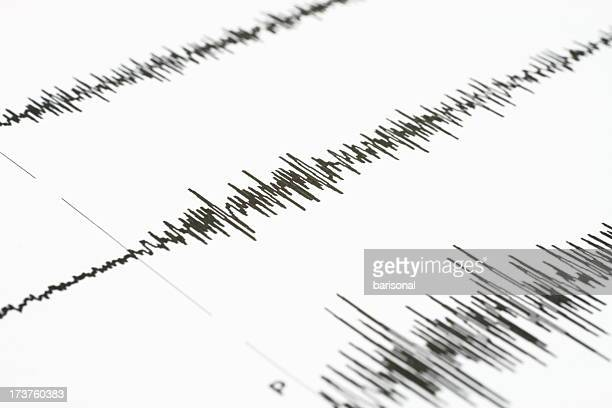 Seismic wave graph on a white paper
