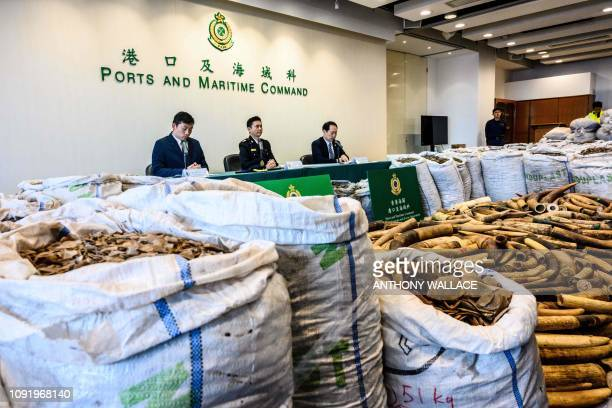 Seized endangered pangolin scales and ivory elephant tusks are displayed during a press conference at the Kwai Chung Customhouse Cargo Examination...
