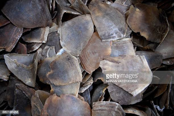 Seized pangolin scales are seen during a press conference at the Malaysian Customs Complex in Sepang on May 8 2017 Malaysian customs officers have...