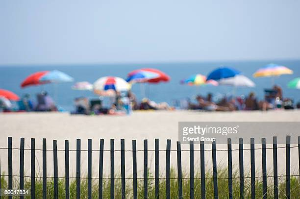 Select focus of sunbathers on the beach.