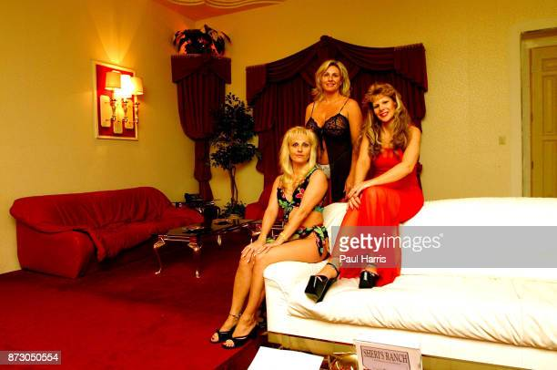 A selection of 3 sex workers who registered with the local Sheriff Sasha on the left comes from Germany left to right Sasha Sharon and Angie at...