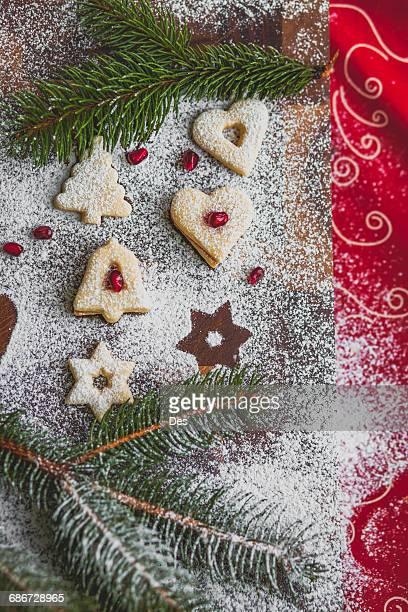 Selection of Christmas cookies with fir decoration