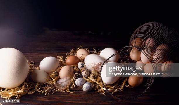 selection of eggs