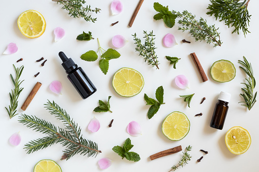 Selection of essential oils and herbs 696973808