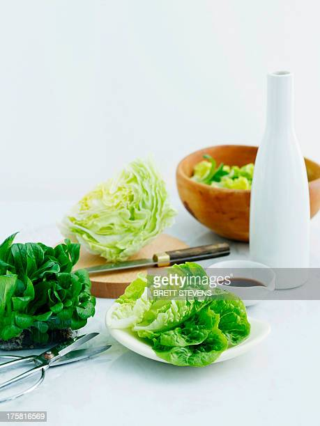 Selection of lettuces with balsamic vinegar and olive oil