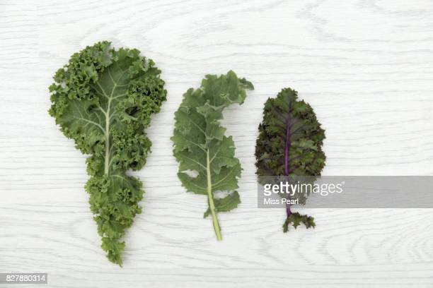 selection of organic kale leaves on table top - kale stock photos and pictures
