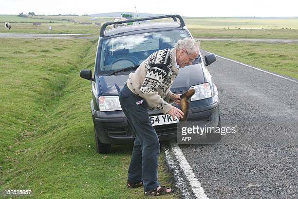Self proclaimed Roadkill Connoisseur Arthur Boyt poses with a dead polecat near to his home in Davidstow in Cornwall England on September 10 2013...