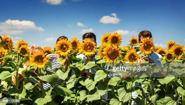 selfie in a sunflower field. - gilaxia foto e immagini stock