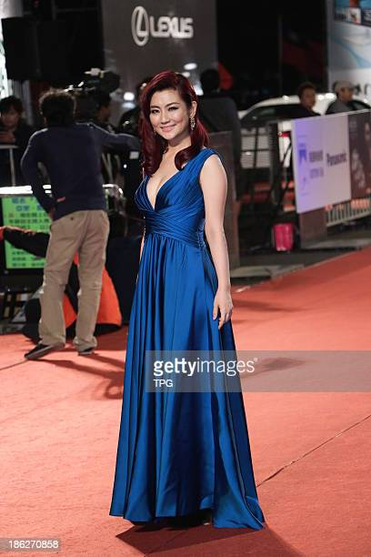 Selina attends the red carpet of the 48th Golden Bell Award on Friday October 252013 in TaipeiChina