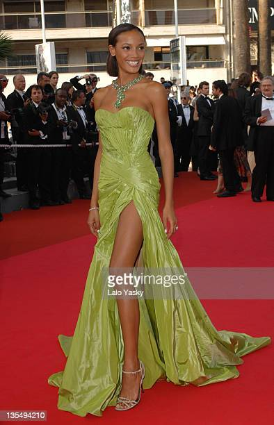 "Selita Ebanks during 2007 Cannes Film Festival - ""Promise Me This"" Premiere at Palais des Festivals in Cannes, France."