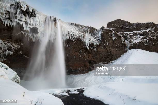 Seljalandsfoss im winter