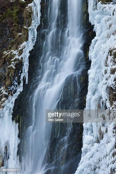 seljalandsfoss waterfall in southern iceland. - alex saberi fotografías e imágenes de stock