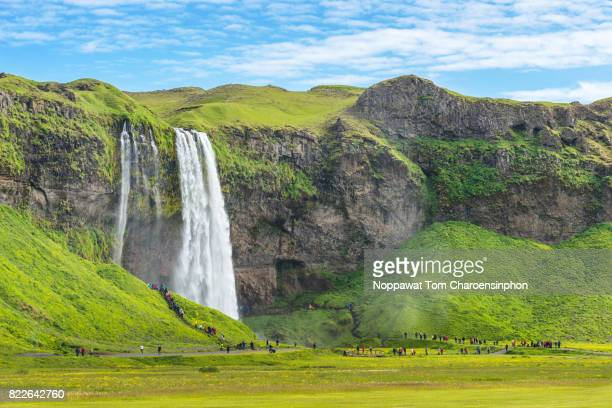 Seljalandsfoss Waterfall in Summer, Iceland