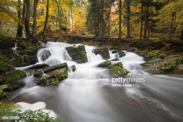 Selke Waterfall, autumn forest, Selketal, Suedharz, Lower Saxony, Germany