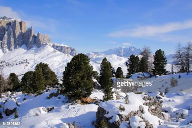 sella massive the dolomites italy at winter - pejft stock pictures, royalty-free photos & images