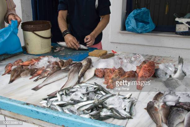 selling fresh fish at a street stall on spetes - spetses stock pictures, royalty-free photos & images