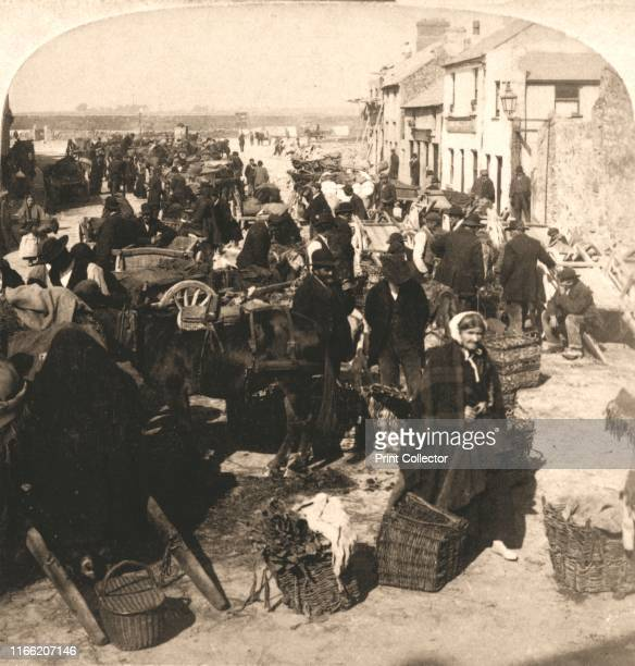 "Selling the Irishman's ?Staff of Life?, the Potatoe Market, Galway, Ireland', 1901. Rom ""Underwood and Underwood Publishers, New York-London-Toroto..."