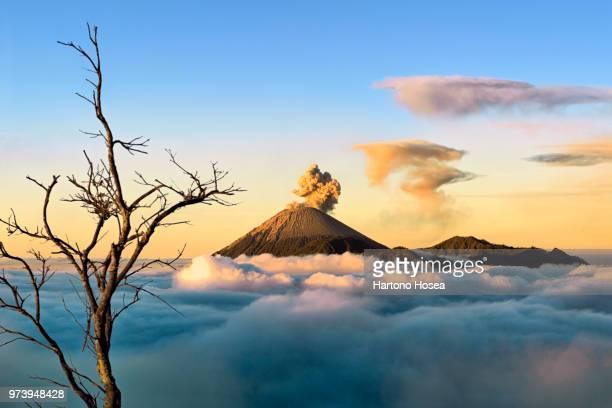 semeru volcano erupting, java, indonesia - bromo tengger semeru national park stock photos and pictures
