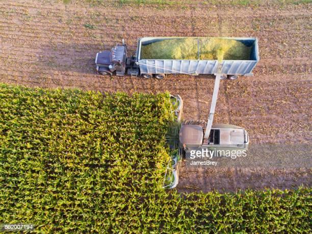Semi truck and farm machine harvesting corn in Autumn