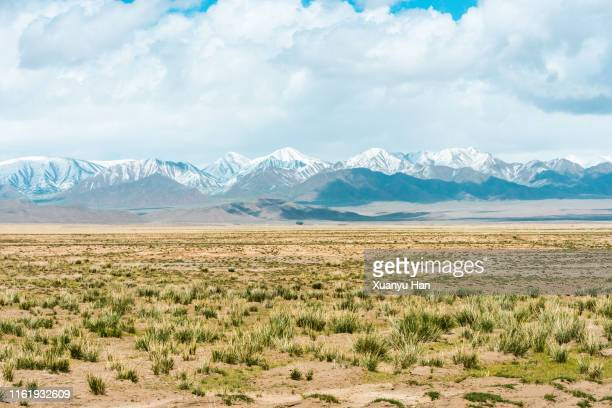 semi-arid grassland and mountain top covered with snow - semi arid stock pictures, royalty-free photos & images
