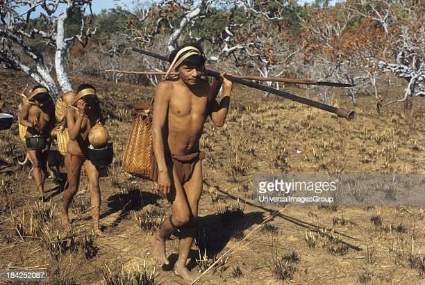 Seminomadic Indians travelling in savanna in the Guiana Highlands of Venezuela during seasonal displacement between rainforest and savanna according...