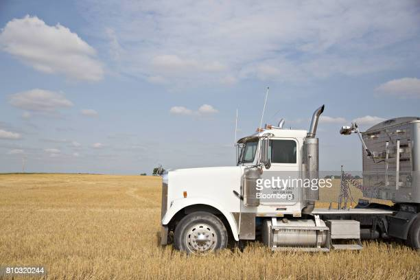 A semitruck sits in a field of hard red winter wheat during harvest in Zurich Kansas US on Thursday June 29 2017 Spring wheat prices posted wide...