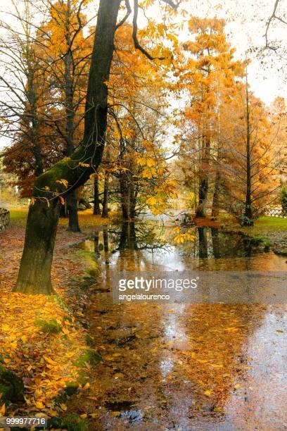 Sempione Park in autumn, Milan, Italy
