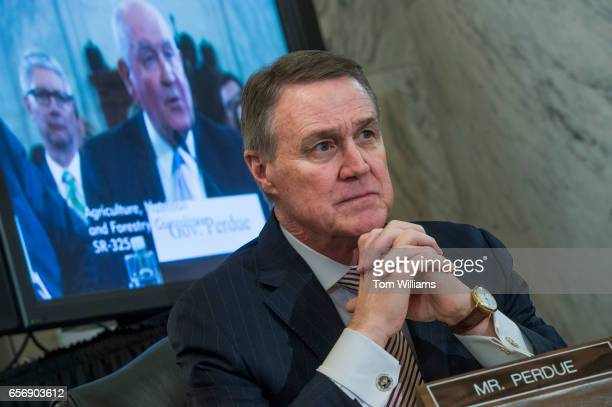 Sen David Perdue RGa listens to cousin Sonny Perdue nominee for Secretary of Agriculture testify during his Senate Agriculture Committee confirmation...