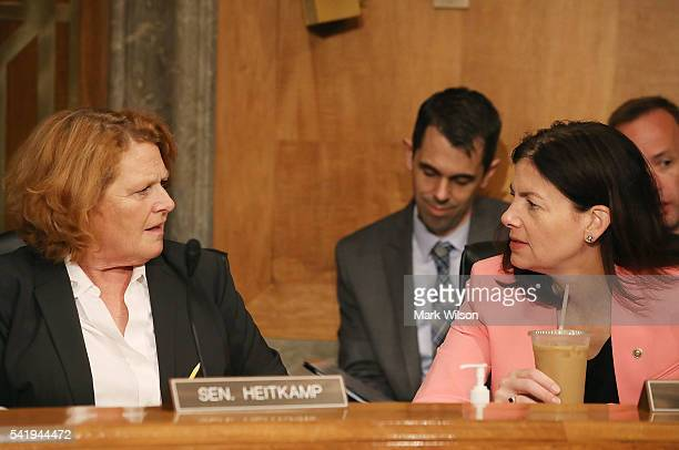 Sen Heidi Heitkamp and Sen Kelly Ayotte confer during a Senate Homeland Security and Governmental Affairs Committee hearing on Capitol Hill June 21...