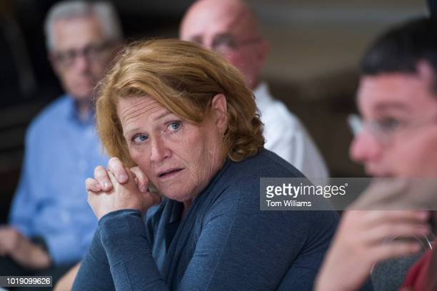 Sen Heidi Heitkamp DND conducts a roundtable discussion with veterans at the Amvets Club in Bismarck ND on August 17 2018 Heitkamp is running against...