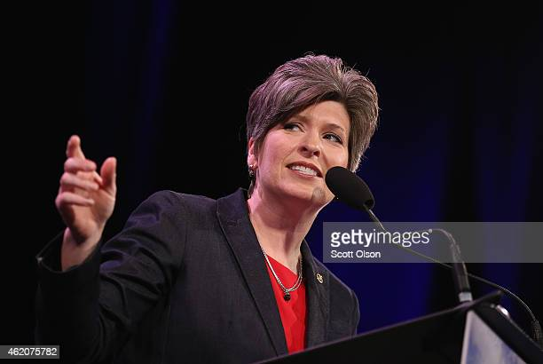 Sen. Joni Ernst speaks to guests at the Iowa Freedom Summit on January 24, 2015 in Des Moines, Iowa. The summit is hosting a group of potential 2016...