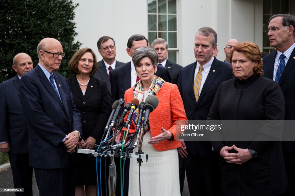 Sen. Joni Ernst (R-IA) speaks to the press after President Trump signed an executive order aimed at undoing former President Barack Obama's Clean Water Rule at The White House on February 28, 2017 in Washington, D.C.