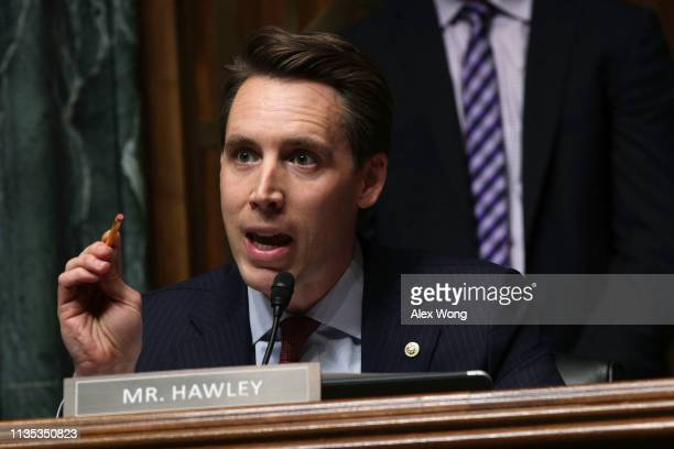 S Sen Josh Hawley speaks during a hearing before the Senate Judiciary Committee March 12 2019 on Capitol Hill in Washington DC The committee held a...