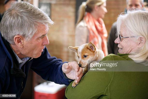 S Sen Mark Udall takes a moment to play with Angus McGee a 13 weekold Australian Cattle Dog held by volunteer Linda Gerhart of Denver Colorado while...