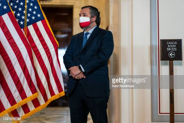 Sen. Ted Cruz is seen during a press conference on Capitol Hill on Thursday, March 4, 2021 in Washington, DC.
