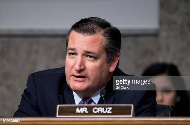 Sen Ted Cruz RTexas questions Lt Gen Paul Nakasone nominee to be NSA director and commander of US Cyber Command during the Senate Armed Services...