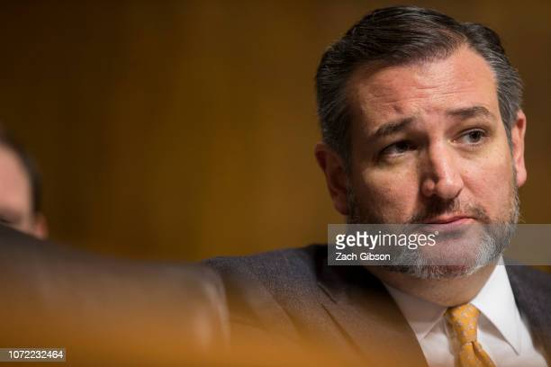 Sen Ted Cruz speaks during a Senate Judiciary Subcommittee on Border Security and Immigration hearing on Capitol Hill on December 12 2018 in...