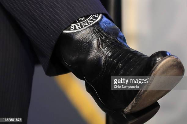 Sen Ted Cruz wears his Senate boots during an event to promote his legislation for Education Freedom Scholarships at the Education Department...