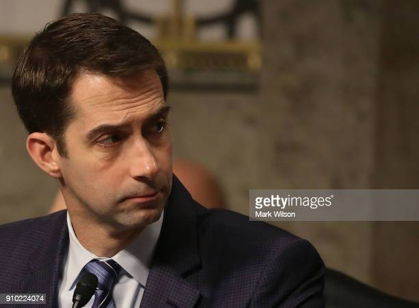 Sen. Tom Cotton participates in a Senate Armed Services Committee hearing on Capitol Hill, on January 25, 2018 in Washington, DC. The full committee...