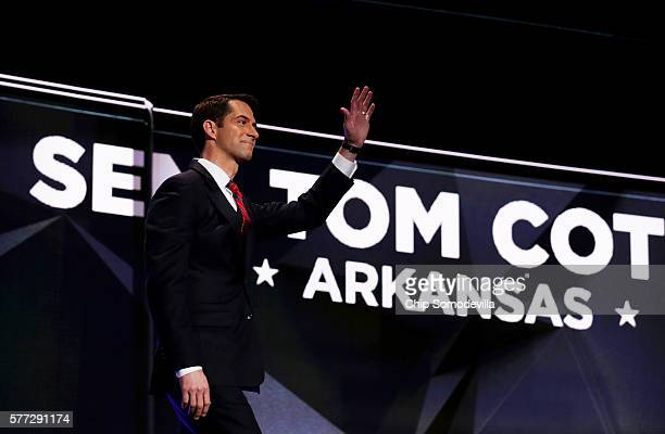 Tom Cotton Stock Photos And Pictures Getty Images