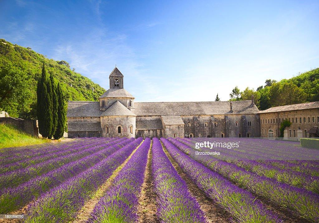 Abtei von Senanque (Provence), Frankreich : Stock-Foto