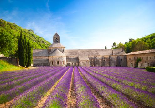 Senanque Abbey (Provence, France) 182059250