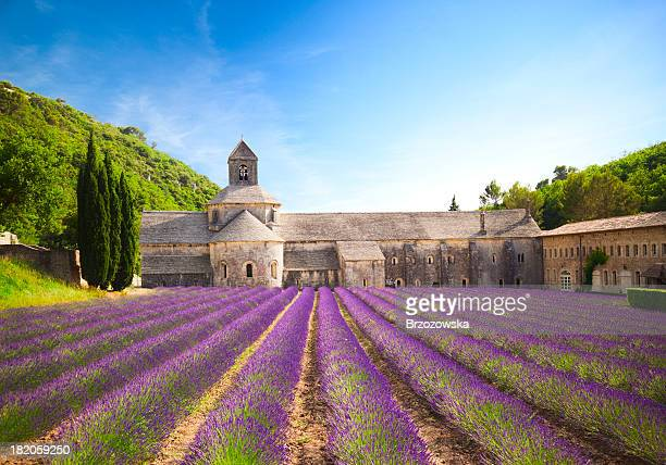 senanque abbey (provence, france) - french culture stock pictures, royalty-free photos & images