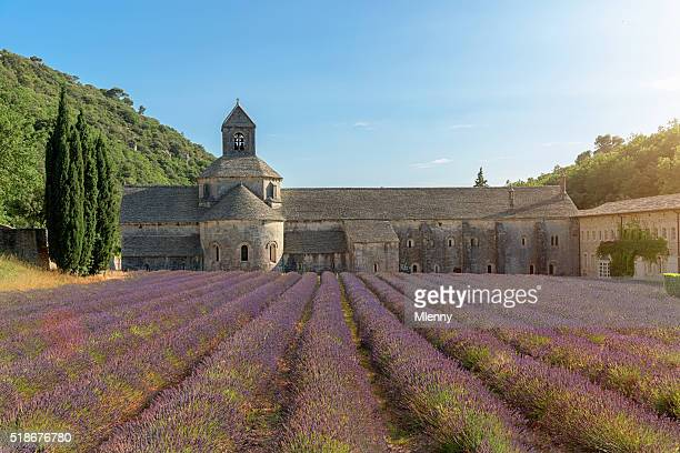 Senanque Abbey Purple Lavender Field Provence France