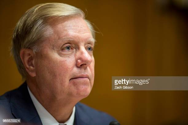 Senate Appropriations Subcommittee on Sate Foreign Operations and Related Programs chairman Sen Lindsey Graham is pictured during a hearing to review...