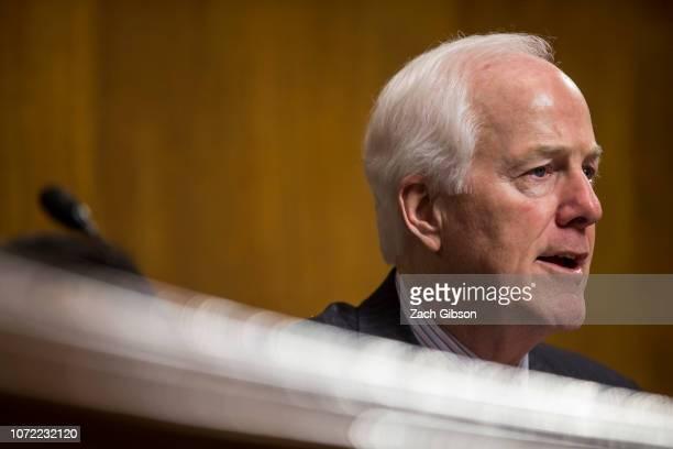 Senate Judiciary Subcommittee on Border Security and Immigration Chairman Sen John Cornyn speaks during a Senate Judiciary Subcommittee on Border...
