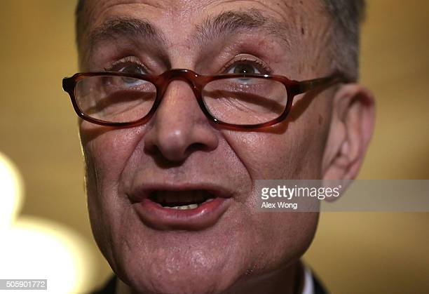 S Senate Sen Charles Schumer speaks during a media briefing after the Democratic weekly policy luncheon January 20 2016 on Capitol Hill in Washington...